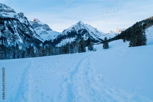 Swiss Winter - Mountain covered in snow Canvas-taulu