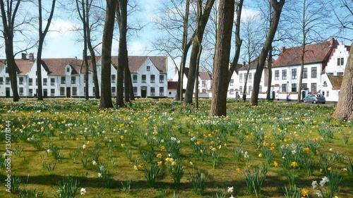 Deurstickers Brugge Béguinage de Bruges au printemps (Belgique)