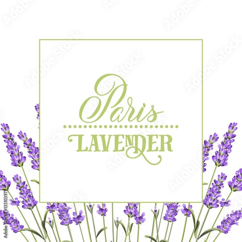 Photo  The lavender elegant card with frame of flowers and text