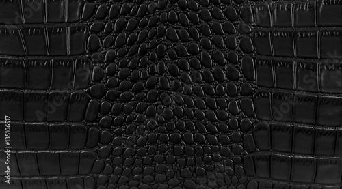 Poster Crocodile Snake skin background. Close up.