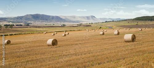Photo sur Toile Amérique du Sud Outback agricultural and farming field