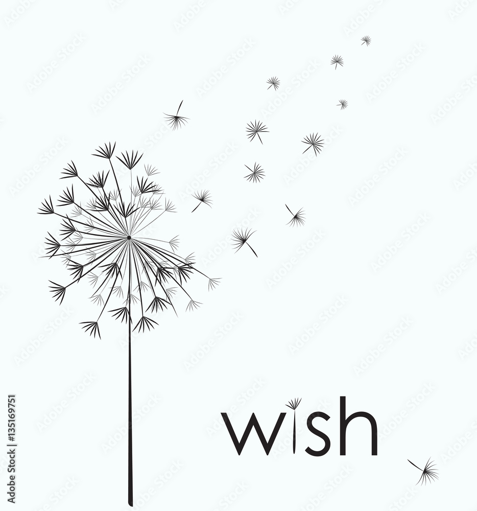 Dandelion vector. Wish. Simple minimalist style.