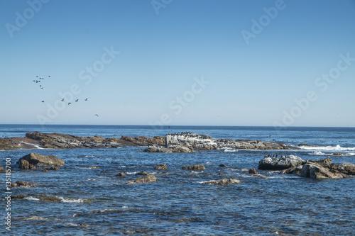 Fotografie, Obraz  Mar com rochas