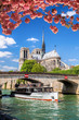 Paris, Notre Dame cathedral with boat on Seine, France