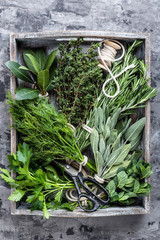 Fototapetafresh herbs in wooden box on stone background
