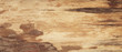 Brown scratched wood texture with natural pattern. Wooden background