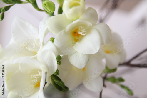 White Freesia Flowers Bouquet Buy This Stock Photo And Explore