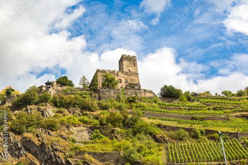 Foto op Aluminium Rudnes Romantic castles in Rhine valley
