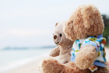 Friendship, Two Teddy Bears Sitting And Looking Ahead.