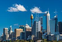 Sydney Skyline On Sunny Day