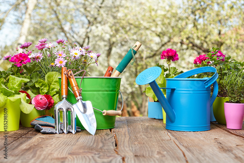 Staande foto Tuin Outdoor gardening tools on old wood table