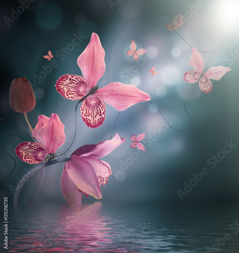 Fototapeta na wymiar Amazing butterflies from the petals of orchids, floral background. Flowers and insects.