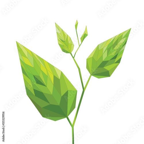 Fotografiet  Pianta verde, foglia verdi geometriche, illustrazione vettoriale
