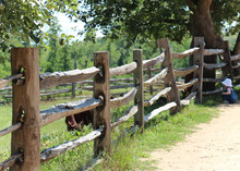 Primitive Split Rail Interlocking Wood Fence Against Lush Greenery