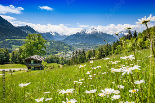 Blooming meadow with alpine hut in front of Watzmann