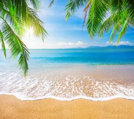 Panel Szklany Podświetlane Eko Palm and tropical beach