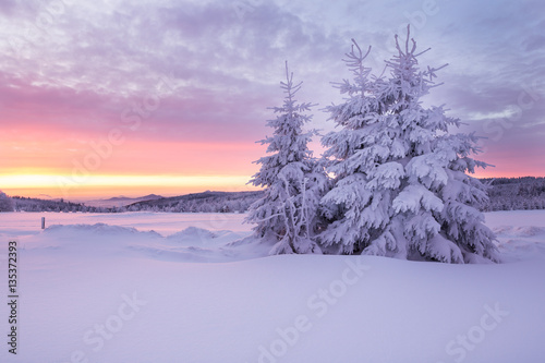 Poster Purper Sunrise over a cold winter landscape with beautiful illuminated clouds