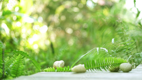 Wood floor foreground for product presentation with green blur f