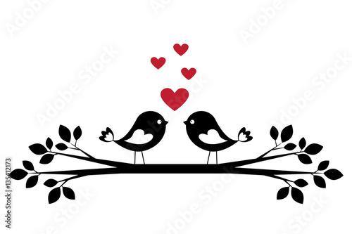 Photo  Silhouette cute birds in love