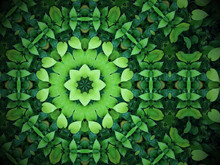 Abstract Greenery Background, ...