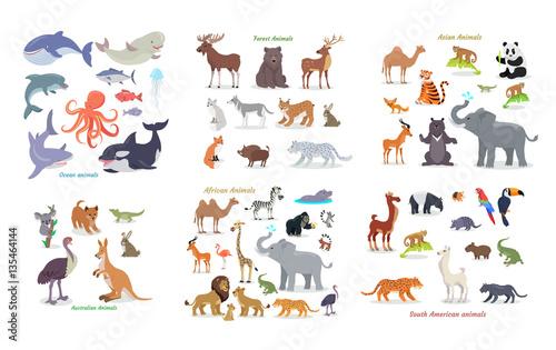 Photo  Ocean, Forest, Asian, Australian, African, Animals