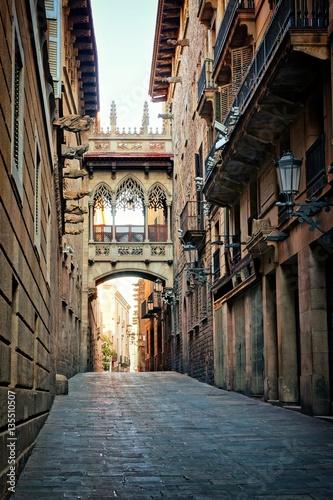 Staande foto Parijs Historic covered bridge in the Gothic Quarter of old Barcelona, Spain