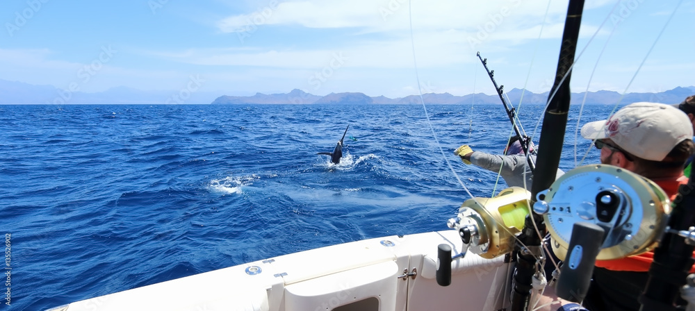 Fototapety, obrazy: Big game fishing. Caught a marlin jumping near the boat.