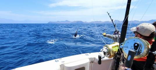 Ribolov velike divljači. Uhvatio marlina kako skače u blizini broda.