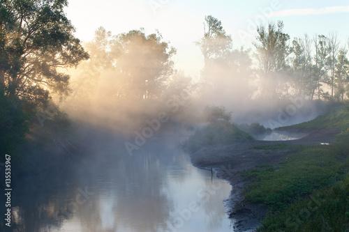 Poster Rivière de la forêt fog over the river