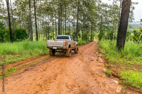 Obraz  Off road pickup truck in the forest. - fototapety do salonu