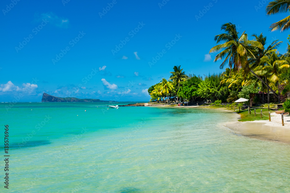 tropical beach with coconut palms on the background of the islan