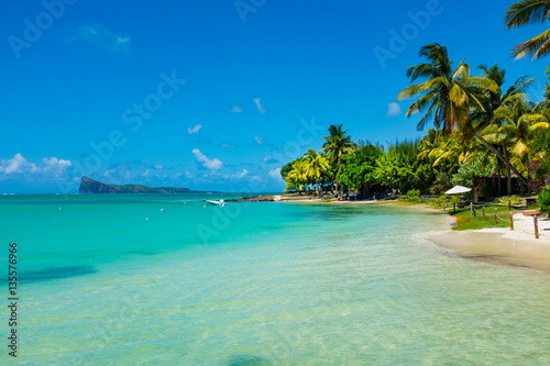 Poster Tropical plage tropical beach with coconut palms on the background of the islan