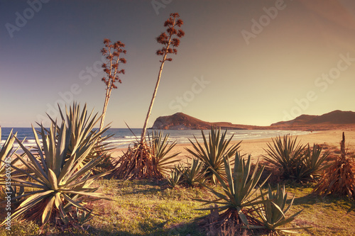 Sunset on the beach Genoveses in the Natural Park of Cabo de Gata, Almeria, Spain