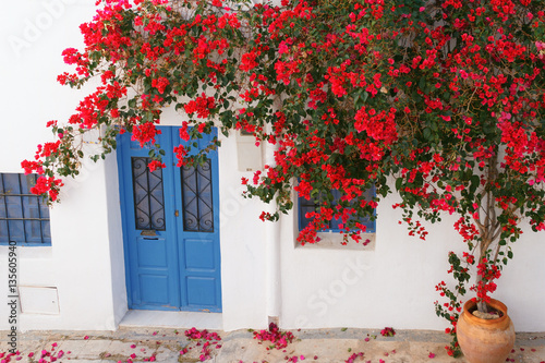 Cuadros en Lienzo Bougainvillea flowered on the facade of a house typical of Nijar, Almeria, Spain