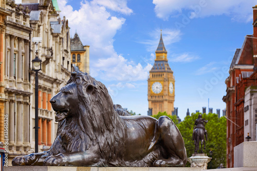 Fotobehang Praag London Trafalgar Square lion in UK