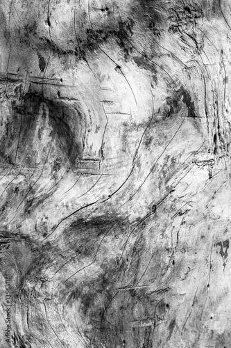 Foto black and white wood grain texture