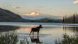 Moose standing in Montana mountain lake at dusk