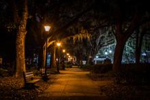 Forsyth Park In Savannah, Geor...