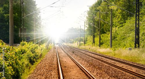 eine Eisenbahnstrecke führt durch einen Wald im Land Brandenburg ( Deutschland )