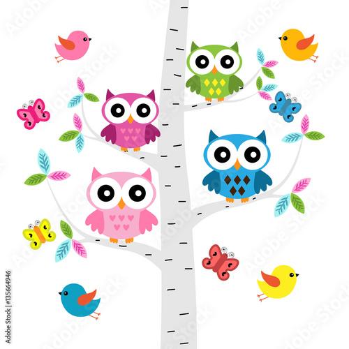 wektorowy-ustawiajacy-kolorowe-sowy-ptaki-i-motyle-przy-drzewem