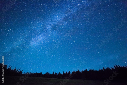 Poster Night Blue dark night sky with many stars above field of trees. Yellowstone park. Milkyway cosmos background