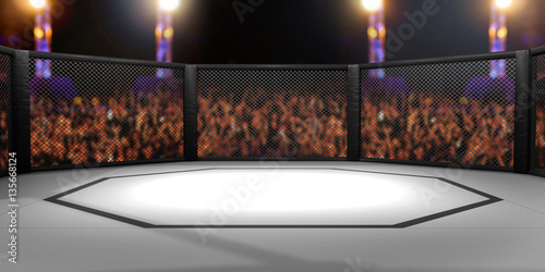 Photo Stands Martial arts 3D Rendered Illustration of an MMA, mixed martial arts, fighting cage arena.