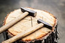Hammer Und Nägel Auf Baumstamm