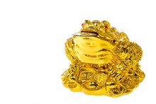 """God Chinese Toad Is Most Commonly Translated As """"Money Toad"""" Or """"Money Frog""""."""