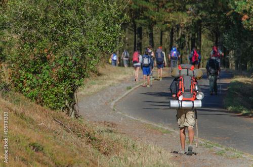 Fotografiet  Camino de Santiago pilgrim with backpack