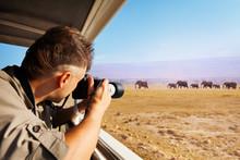 Man Taking Photo Of Elephants At African Savannah