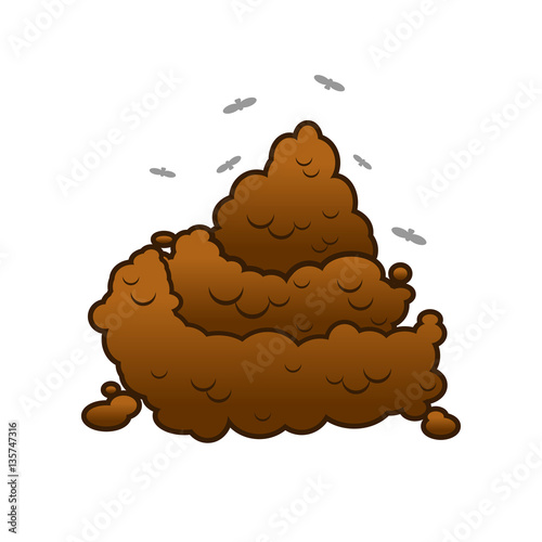 Photo  Poop and flies. Shit isolated. Turd on white background.