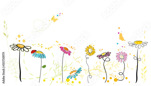 Fotografia Spring time. Colorful daisy spring flowers