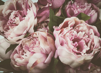 Obraz na PlexiVintage peony flowers background.