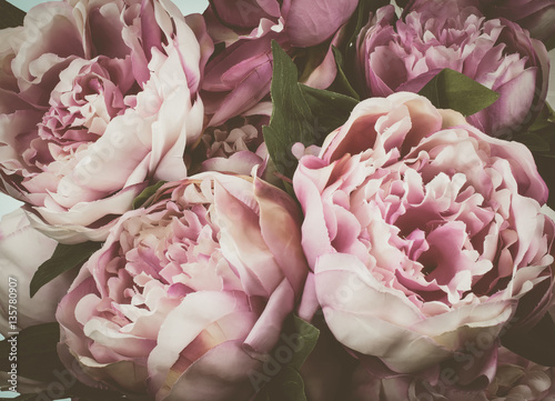 Vintage peony flowers background.